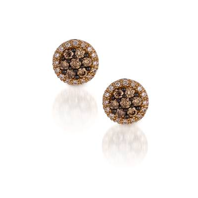 14K Honey Gold™ Earrings with Chocolate Diamonds® 1/2 cts., Vanilla Diamonds® 1/6 cts. | YPIN 9