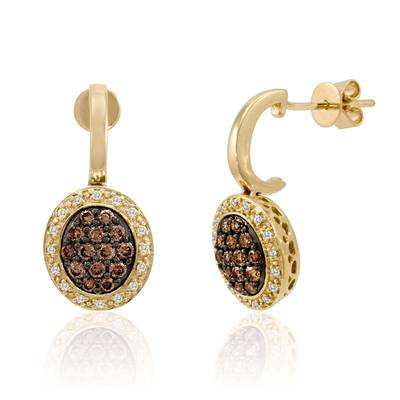 14K Honey Gold™ Earrings with Chocolate Diamonds® 1/2 cts., Vanilla Diamonds® 1/10 cts. | YPIR 242