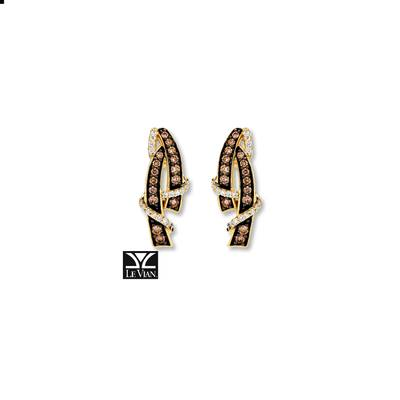 14K Honey Gold™ Earrings with Chocolate Diamonds® 3/8 cts., Vanilla Diamonds® 1/6 cts. | YRCA 35